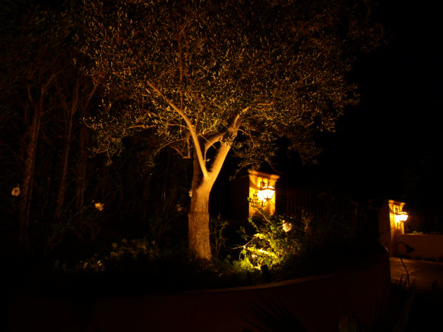 Agoura Exterior Lighting